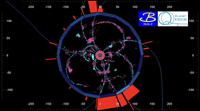 3rd quarter 2019 - First collisions in the full Belle II detector